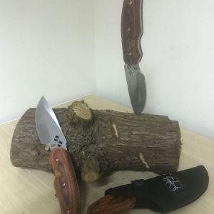 Pandanus knife PIXLR