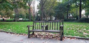 Bench in Rittenhouse Square Park