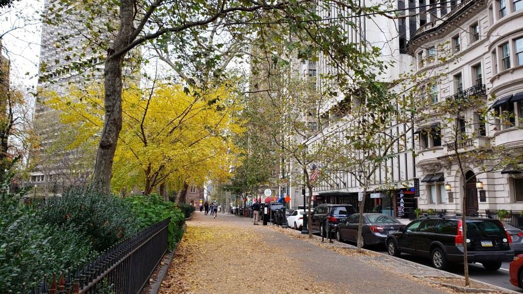 Fall colors in Philadelphia.