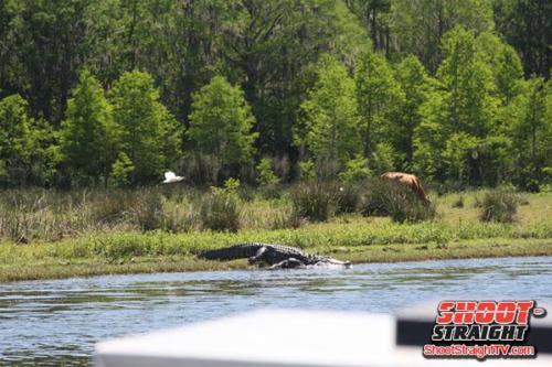 Florida hunting shoot straight tv