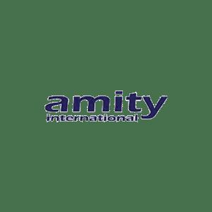 AMITY 500-500