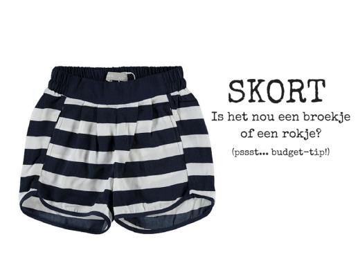 SKIRT (1)