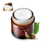 Mizon-All-In-One-Snail-Repair-Cream-shopandshop