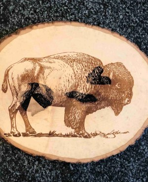 laser etched engraved buffalo wood slice