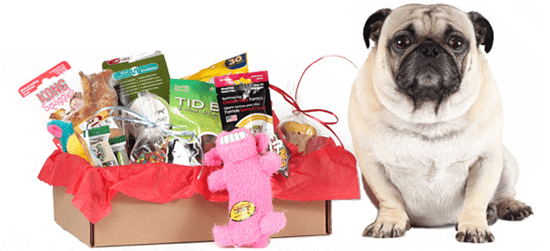 Bugsy's Box Subscription for less via Daily Candy Deals