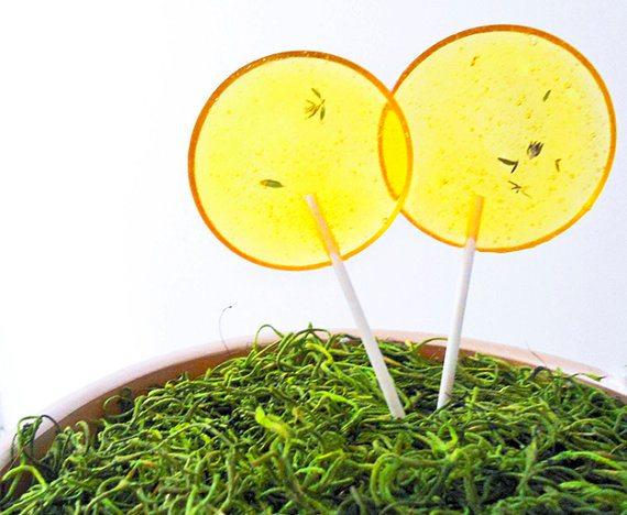 Lemon Thyme Gourmet Lollipops