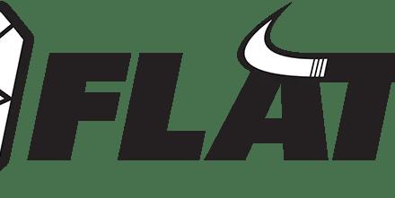 8FLAT Logo Design