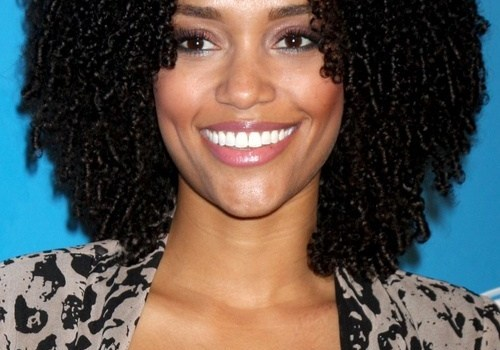 Black Short Curly Hairstyles - black short curly hairstyles 1