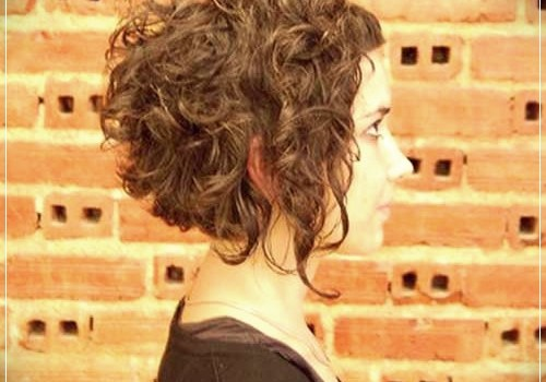 Top 20 Female Short Curly Hairstyles - female short curly hairstyles 18