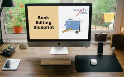 Affordable Book Editing Blueprint Course On How To Revise A Novel