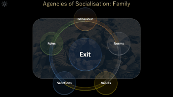 Agencies of Socialisation PowerPoint: Click to download.