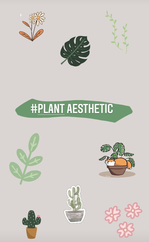 IG Plant Aesthetic Stickers