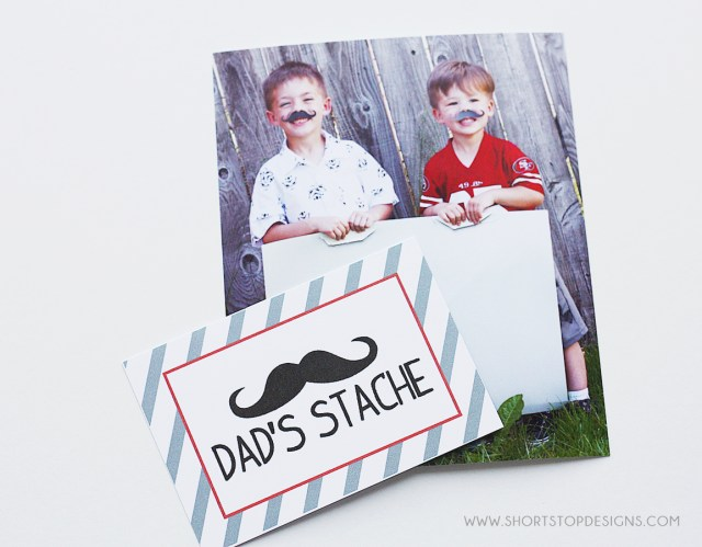 Dad's Stache Father's Day Gift