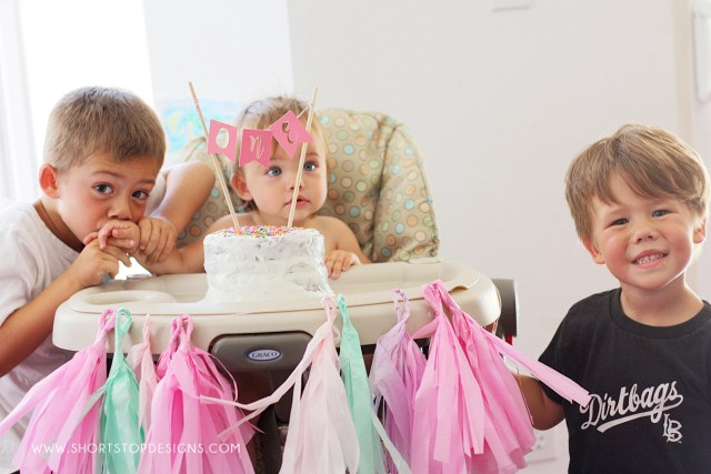 1st Birthday Party for girls