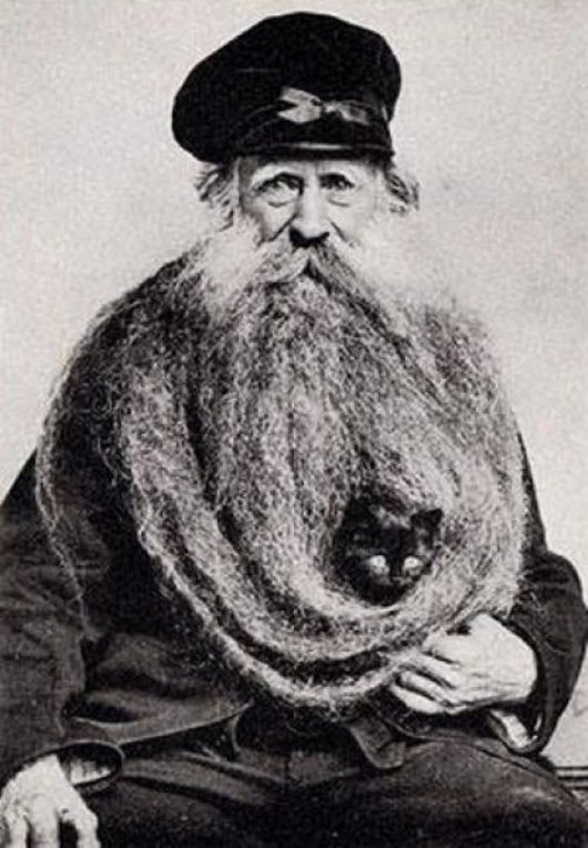 man-with-cat-in-his-beard