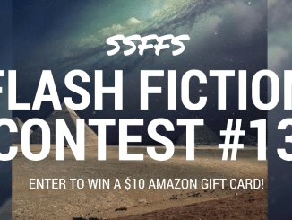 ssffs flash fiction contest 13