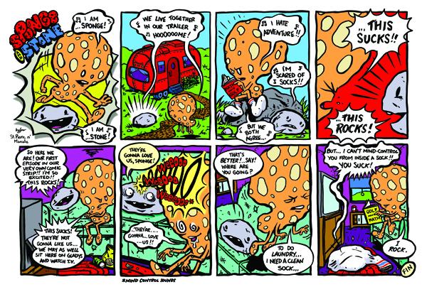 Sponge and Stone1