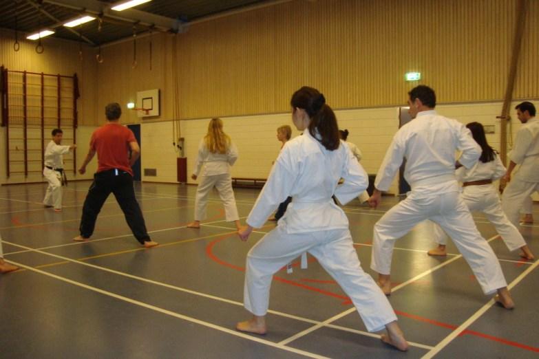 Kihon (techniek) op de open karate training