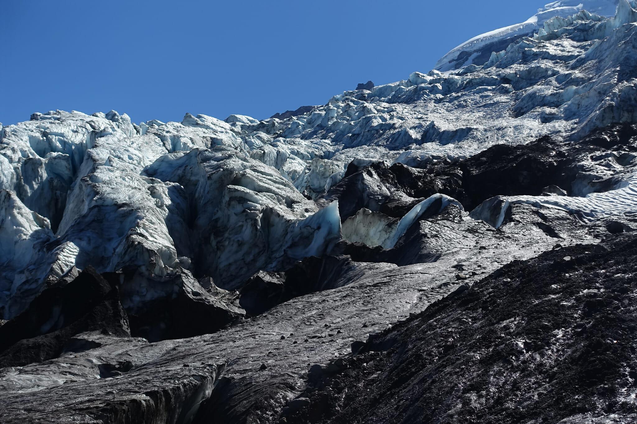 Coleman Glacier from Heliotrope Ridge