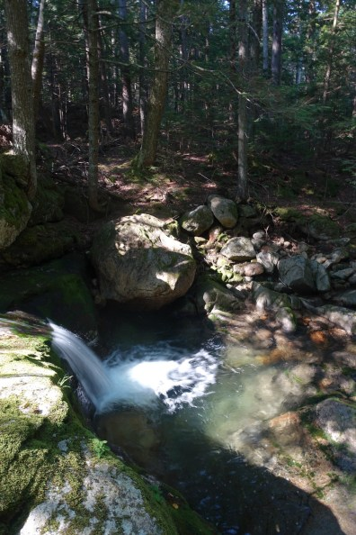 Water cascades over granite and moss