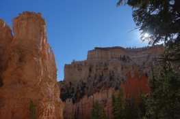 Sun, trees, hoodoos, and canyon walls along the Peekaboo Loop Trail