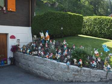 Lots of gnomes alongside a driveway