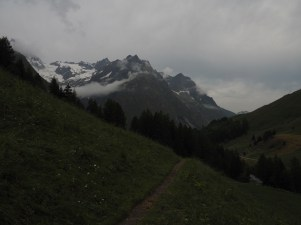 Trail and mountains on a grey morning