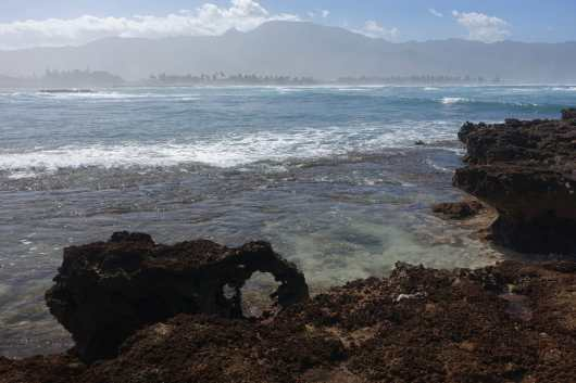 Pua'ena Point Beach Park