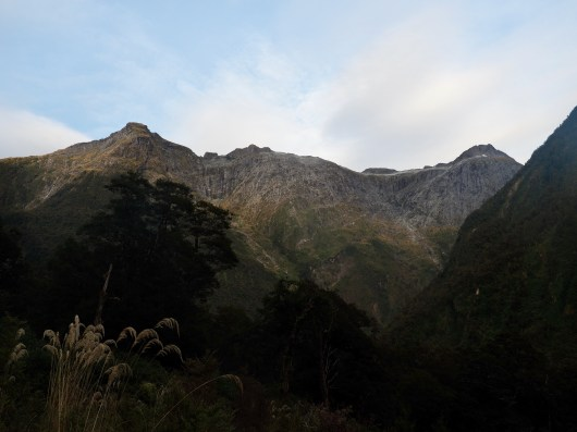 Morning Views along the Milford Track