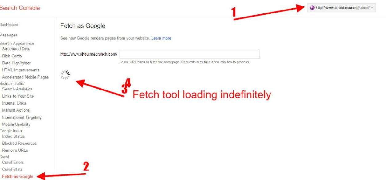 Fetch as Google Not Working