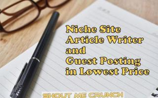 Niche Site Article Writer and Guest Posting