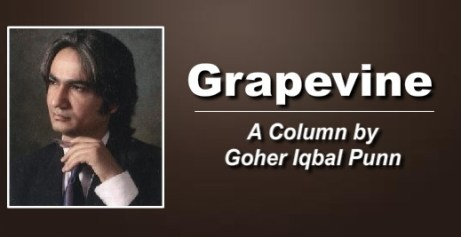 goher-column picture