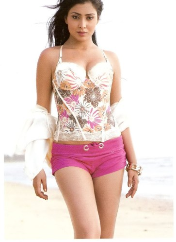 shriya saran hot-showbizbites-04