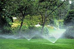 Home Maintenance #3 – Your Sprinkler