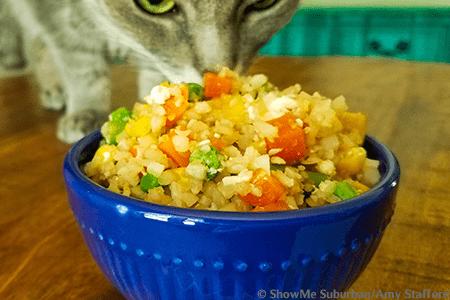 ShowMe Suburban | Impostor Fried Rice