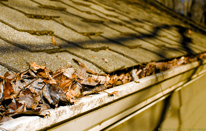 It's important to clean out gutters regularly. Doing so keeps rain flowing away from your home, and helps prevent water damage. Discover the tools you'll need to diy your gutter cleaning, get product recommendations, and learn a few hacks. Your ladder awaits!
