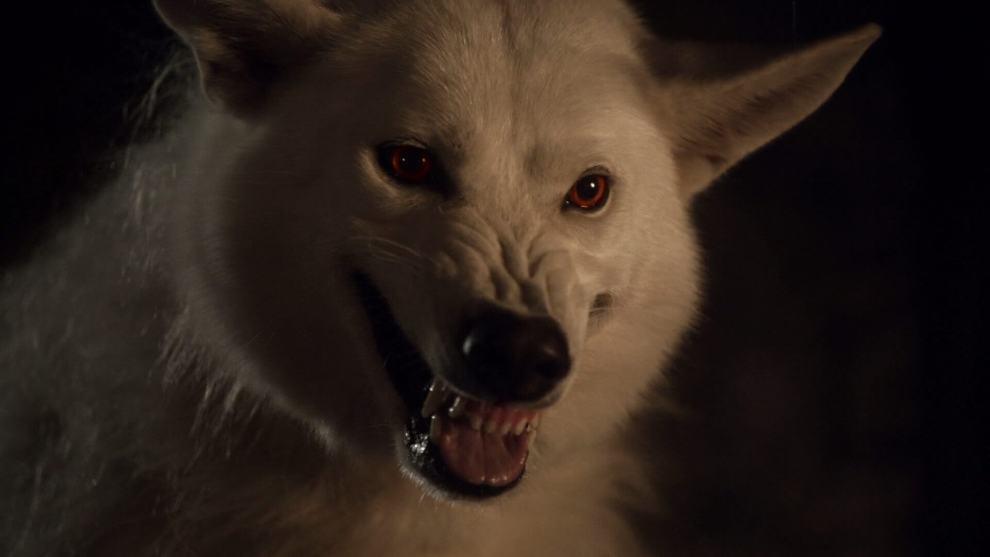 fantasma game thrones - Lobos gigantes devem estar de volta na sétima temporada de Game of Thrones