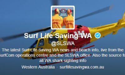 twitter proteção - Twitter: alertas de tubarão na Austrália