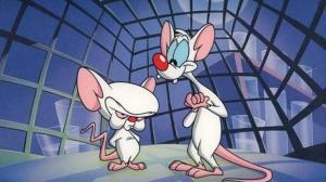 Células humanas são usadas para criar ratos mais inteligentes 7