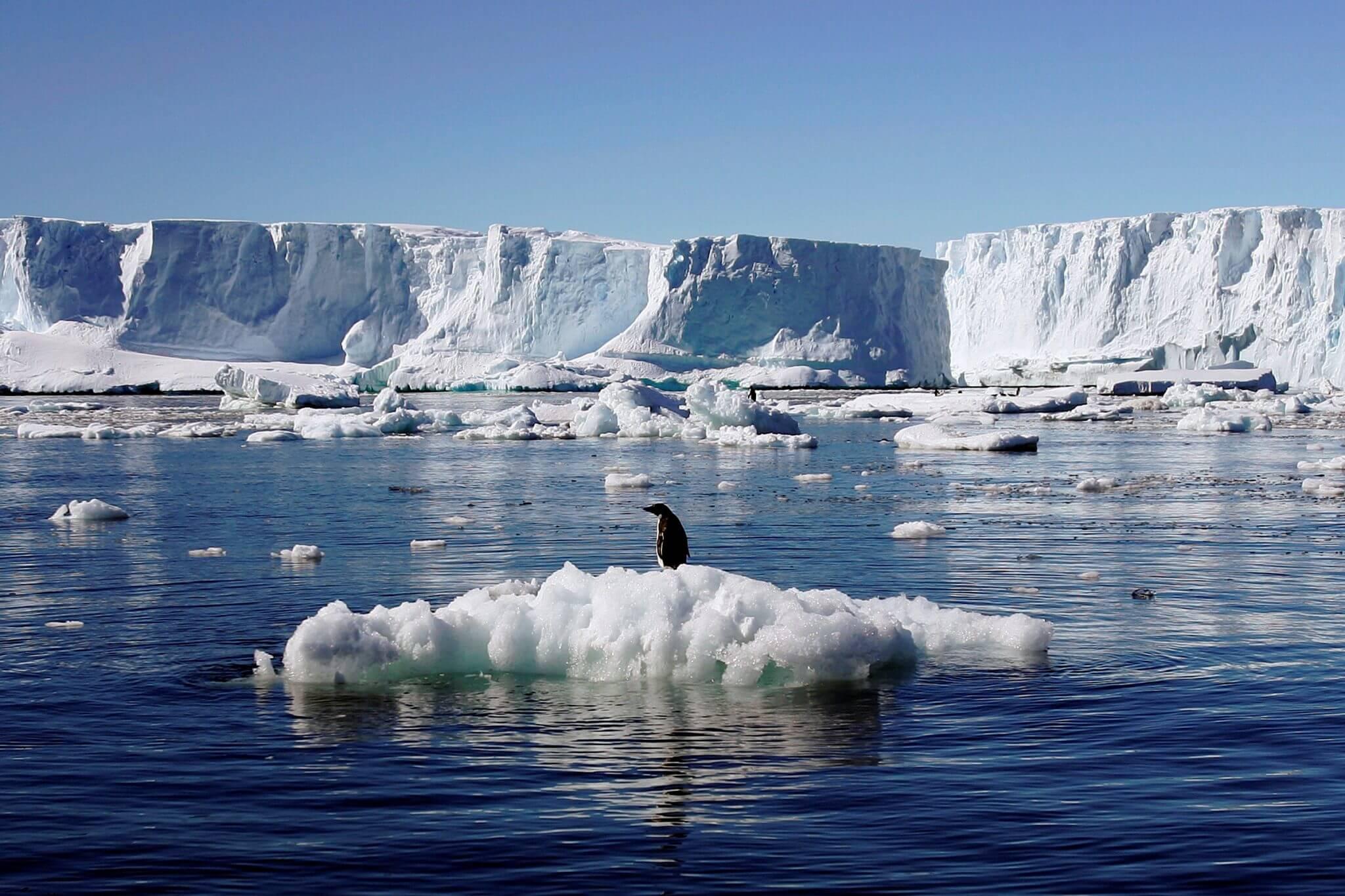 geleira - O homem que teve a chance de evitar o aquecimento global