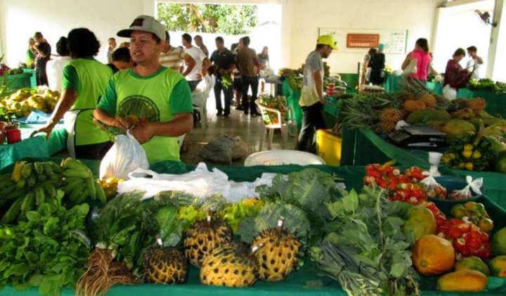 produtos organicos 720x421 - Projeto de Lei limita venda de produtos orgânicos e causa polêmica