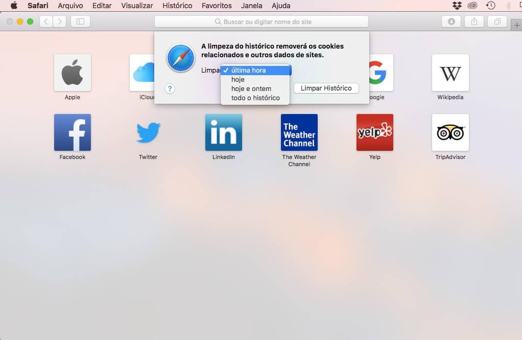 Limpeza de browser