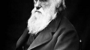 """Há 159 anos, """"A Origem das Espécies"""" era publicada por Darwin 10"""