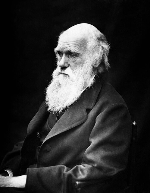 """Há 159 anos, """"A Origem das Espécies"""" era publicada por Darwin 3"""