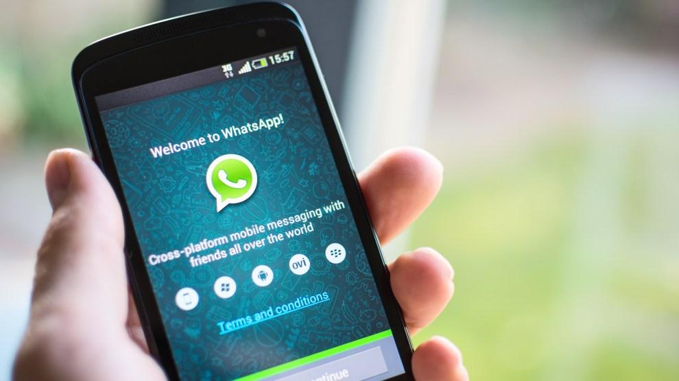 Novo WhatsApp