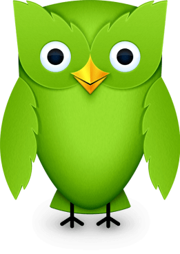 duolingo owl - Duolingo agora tem modo offline e moeda virtual