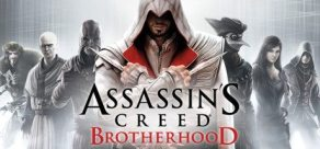 assassins brotherhood