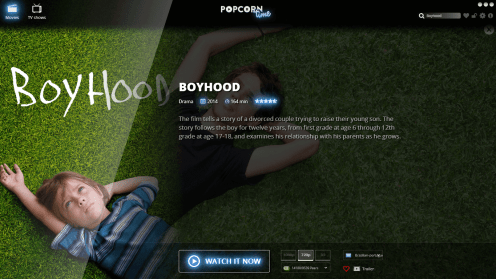 Página do filme Boyhood no Time4Popcorn