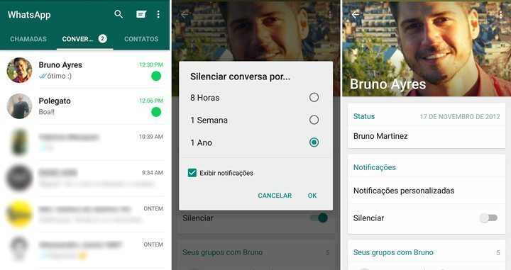 WhatsApp-silenciar-contato