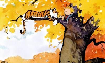 Calvin & Hobbes Calvin e Haroldo